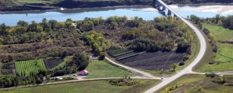.1-A.  Petrofka Orchard